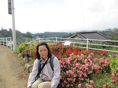 36 街道の花壇(三ツ谷)