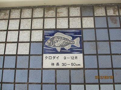 23 魚タイル・クロダイ