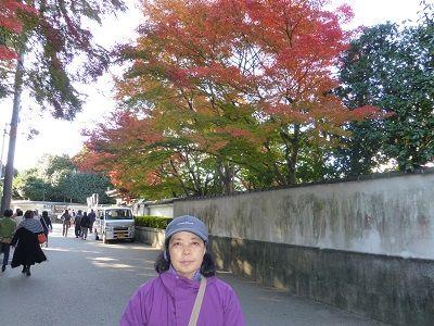 036 東福寺付近