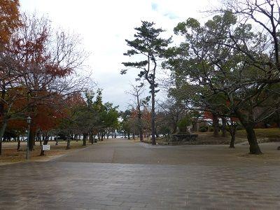 095 膳所城址公園・風景