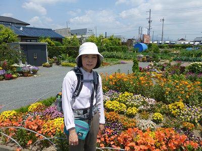 021 街道沿いの花壇(桜町)