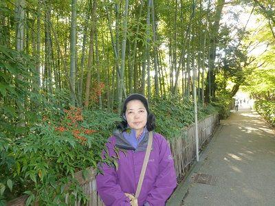 045 竹の小道