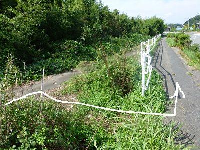 073 道の先は柵です