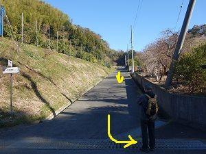 012 薩埵峠上り分岐