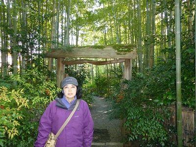 041 竹林の家の門前