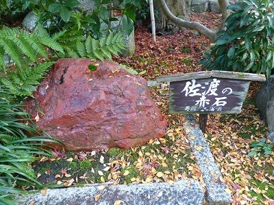 122 佐渡の赤石