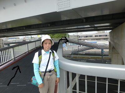 028 新田北歩道橋