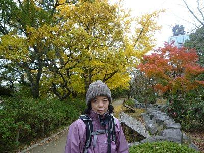 05-① 公園の紅葉