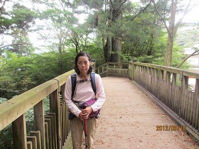 31 木製の横断歩道橋