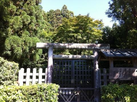 有智子墓3