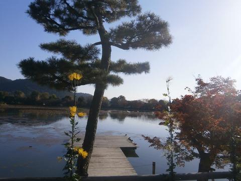 名古曽の滝2