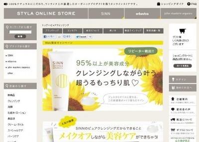 SINNホームページスクリーンショット