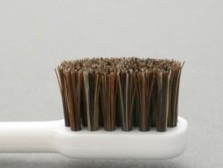 江戸屋の馬毛歯ブラシ