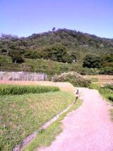 修学院離宮の畑