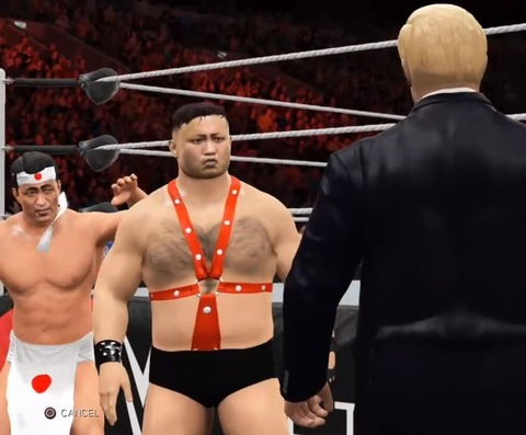 WWE 2K17_20161114153433