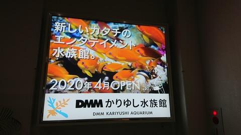 DSC_4298