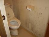 カビカビトイレ