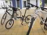 050625葛西臨海公園サイクリング01.JPG