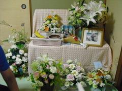 2011_0619_135157-CIMG2436