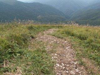 18林間コースの展望