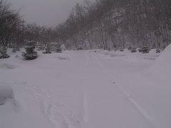 16降り積もる雪