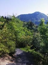 権現山から阿武山