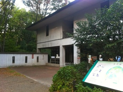 自然教育園17