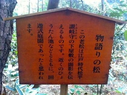 自然教育園11