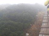 15木の通路
