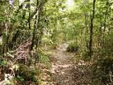 07東山本登山道