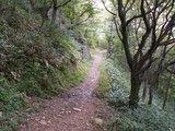 21林間コース1