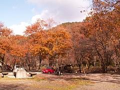 紅葉の朝(2006_11大鬼谷)