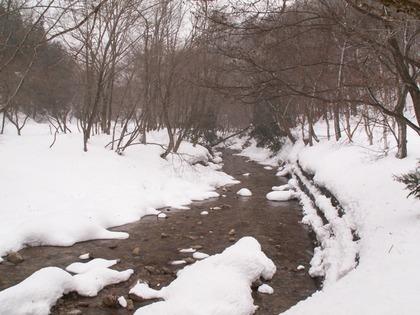2010冬休み