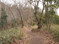 阿武山縦走路