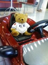 FIAT熊