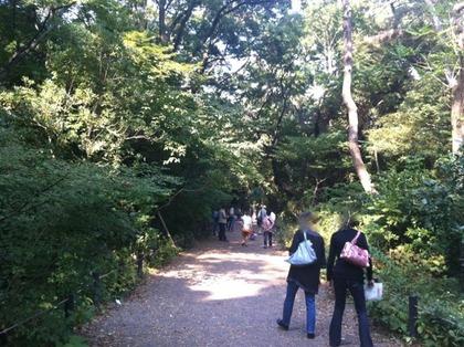 自然教育園04