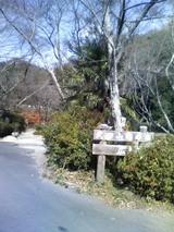 7憩いの森