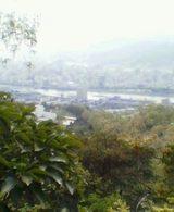 神田山からの景色