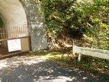 43トンネル脇の下山道入口