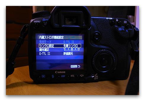 40D_repair_20090525-4
