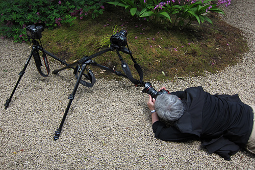 manfrotto20110529-3