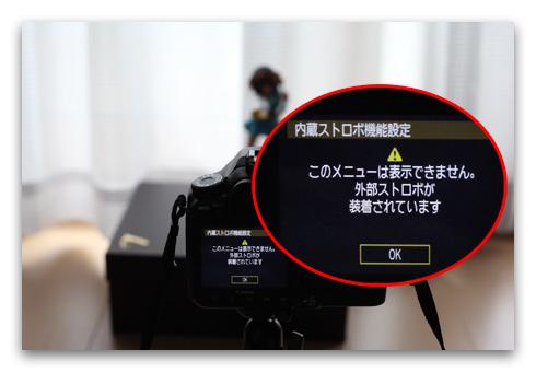 40D_repair_20090525