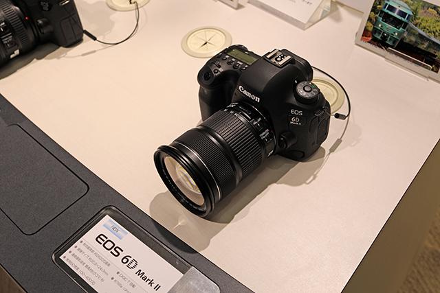 5D4A5485