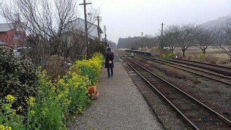 いすみ鉄道36