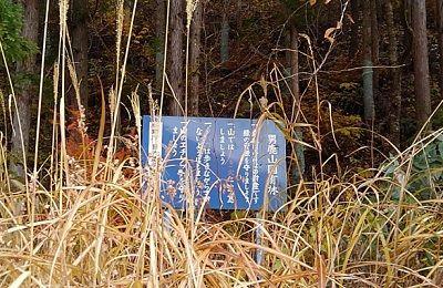 野岩鉄道54