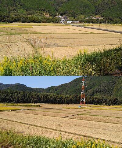 錦川鉄道a21