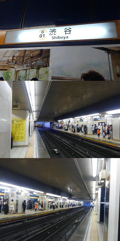 東京メトロ銀座線50