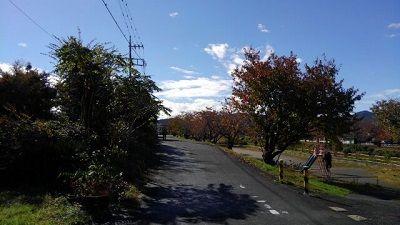 京王御陵線08