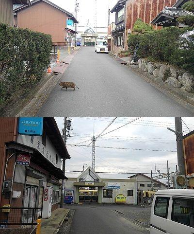 三岐鉄道北勢線a59