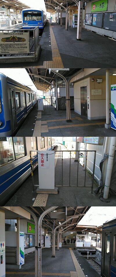 伊豆箱根鉄道大雄山線27